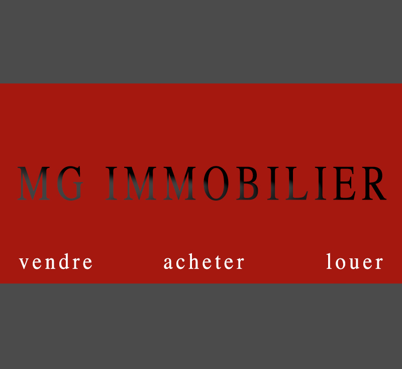 MG IMMOBILIER 42